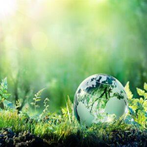 Woodhurst discusses – Sustainability
